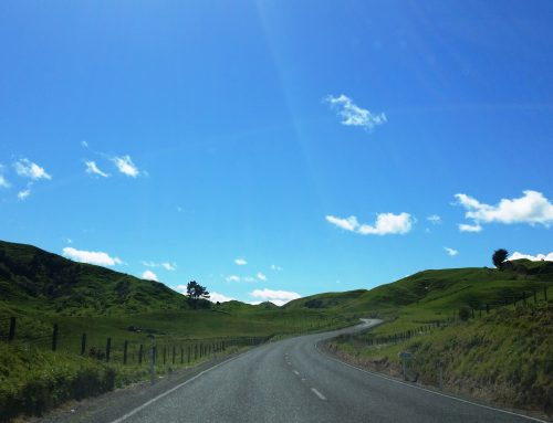 5 Tips for greener road trips