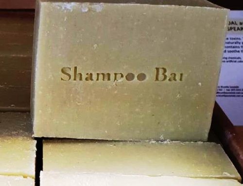 How to use natural shampoo bars (and other updates)